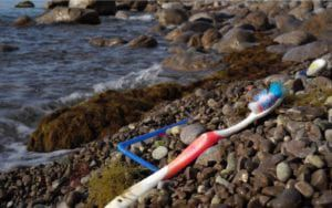 Toothbrush washed up on the beach
